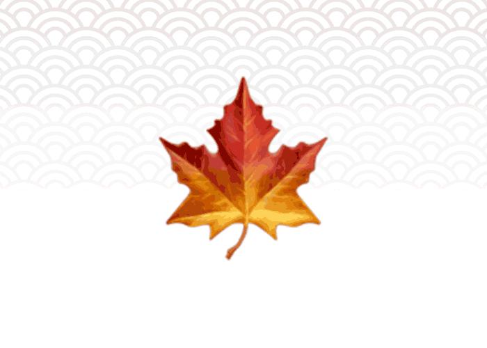 Trimestre d'automne : Inscriptions ouvertes !